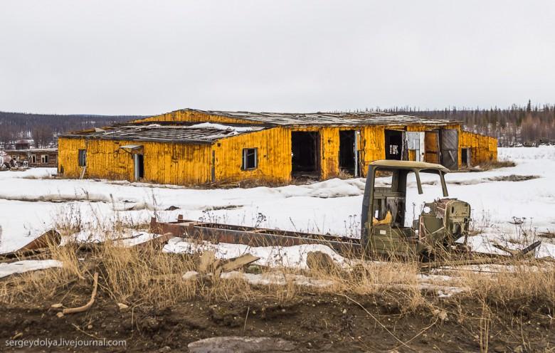 Якутская тайга фото 26