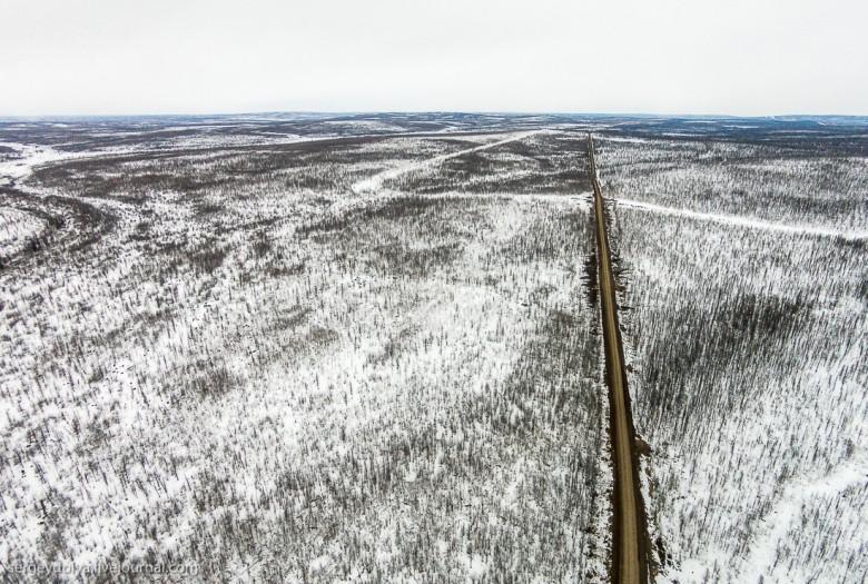 Якутская тайга фото 2