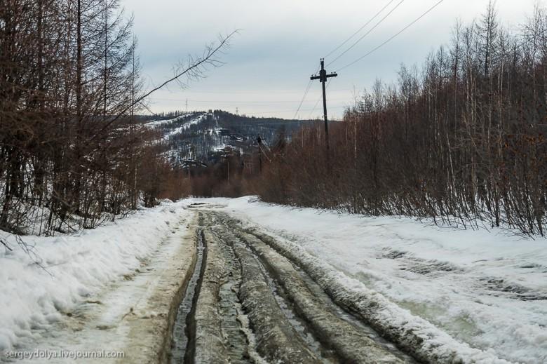 Якутская тайга фото 16