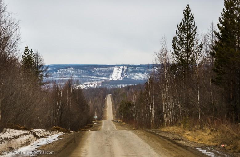 Якутская тайга фото 3