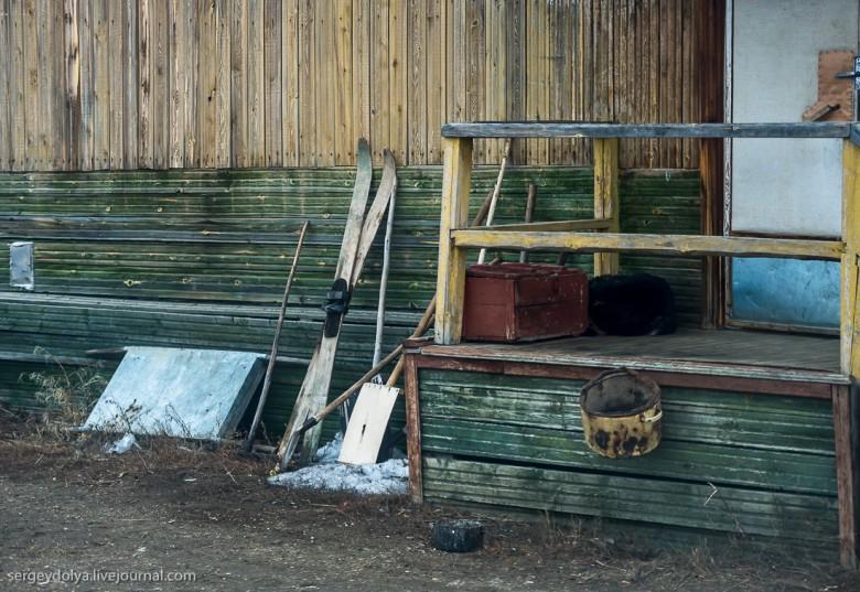 Якутская тайга фото 27