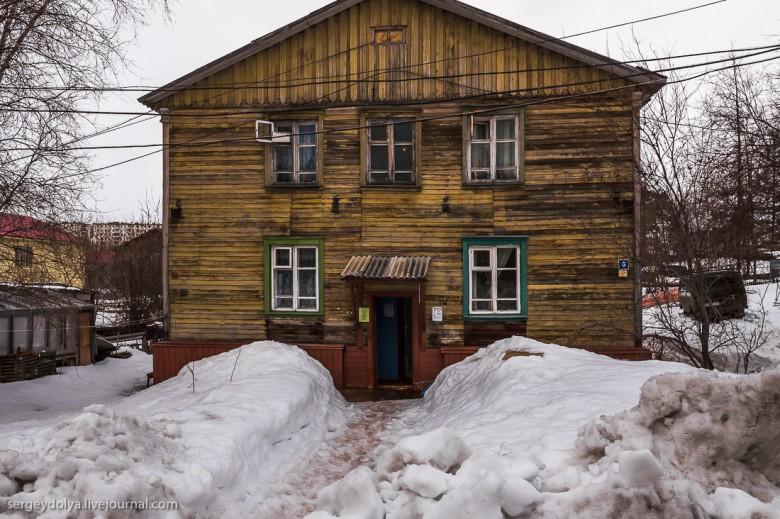 Якутская тайга фото 13