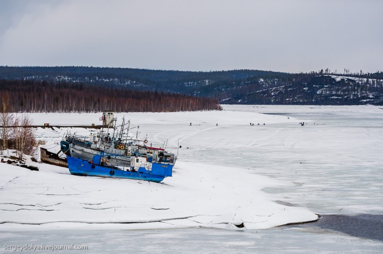 Якутская тайга фото 17